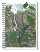 Stone Mountain Falls - The Upper Cascade - Iv Spiral Notebook