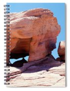 Stone Temple Valley Of Fire Spiral Notebook