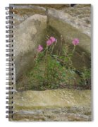 Stone Wall Determination Spiral Notebook