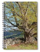 Stone Wall Spring Landscape Spiral Notebook