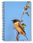 Stonechat On Branch Spiral Notebook