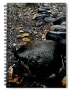 Stoned Trail Spiral Notebook