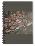 Stoneman Spiral Notebook