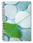 Stones And A Gingko Leaf Spiral Notebook