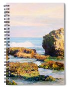 Stones In The Sea Spiral Notebook
