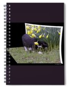 Stop And Feel The Flowers Spiral Notebook