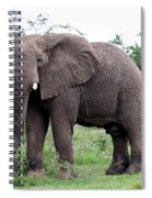Stop And Stare Spiral Notebook
