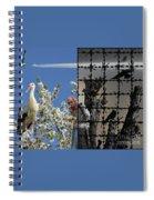 Stop Chemtrails Spiral Notebook