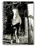 Stopping For A Pose - Southern Indiana Spiral Notebook
