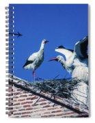 Storks Of Segovia Spiral Notebook