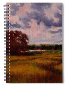 Storm Over Marshes Spiral Notebook