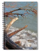 Storm Ravaged Spiral Notebook