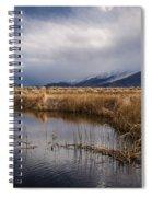 Storm Reflections Spiral Notebook
