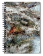 Storm Shelter Spiral Notebook
