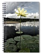 Stormy Lotus Spiral Notebook