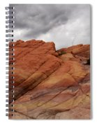 Stormy Weather 4 Spiral Notebook