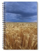 Stormy Wheat Field Spiral Notebook