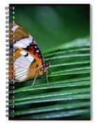 Straddling Between Spiral Notebook