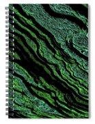 Stratification Spiral Notebook