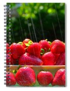 Strawberries And Summer Showers Spiral Notebook
