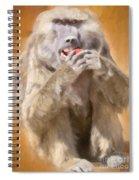 Strawberry Baboon Spiral Notebook