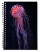 Strawberry Jelly Spiral Notebook