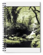 Stream In An Ancient Wood Spiral Notebook