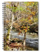 Stream In An Autumn Woods Spiral Notebook