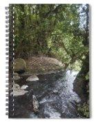 Stream In  Rainforest Spiral Notebook