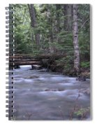 Stream In The Forest Spiral Notebook