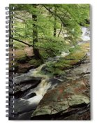 Stream In The Irish Countryside Spiral Notebook