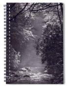 Stream Light B W Spiral Notebook