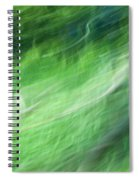 Streaming Life Spiral Notebook
