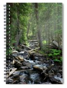 Streaming Through The Trees Spiral Notebook