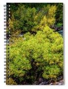 Streamside Spiral Notebook