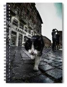 Street Cat Spiral Notebook