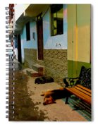 Street Dogs Spiral Notebook