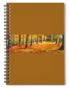 Strid Wood Spiral Notebook