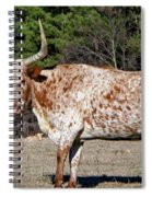 Strike A Pose - Longhorn Style Spiral Notebook