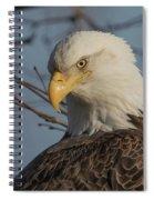 Striking A Pose Spiral Notebook