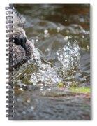 Striking Distance Spiral Notebook