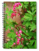 String Of Bleeding Hearts Spiral Notebook