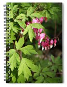 String Of Hearts Spiral Notebook