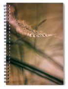 String Of Pearls Spiral Notebook