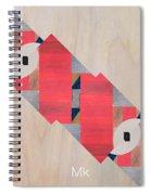 Stripe Spiral Notebook