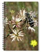 Striped Bee Spiral Notebook