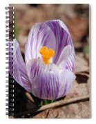 Striped Crocus Spiral Notebook