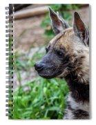 Striped Hyena Spiral Notebook