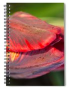 Striped Red Tulip Spiral Notebook