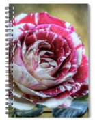 Striped Rose  Spiral Notebook